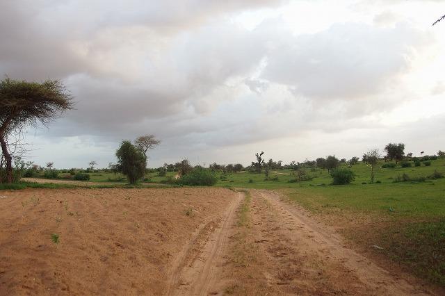 セネガルお宅訪問の旅 後編「人生初のアフリカ村 バイファルの村へ」
