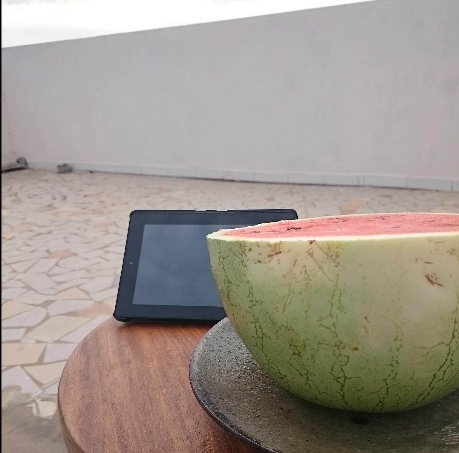 「日本のスイカの美味しい見分け方」を、アフリカで試してみた