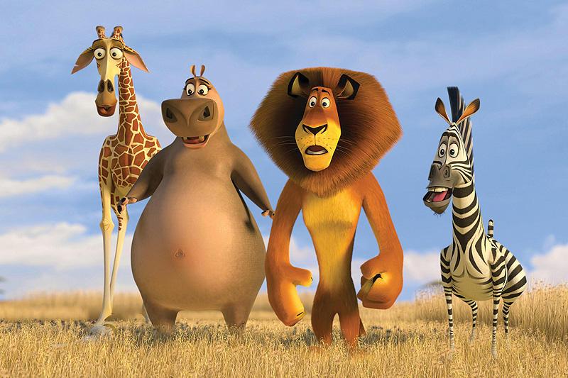 アフリカに興味が無い人に観て欲しいマダガスカル